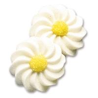 100 pcs White daisies
