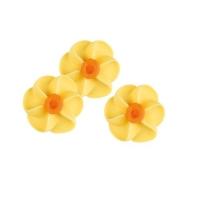 100 pcs Daffodils