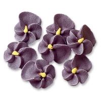 200 pcs Lilacs