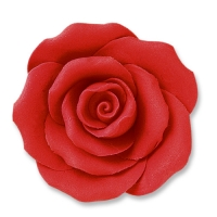 24 pcs Large roses, red