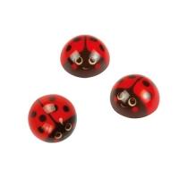 60 pcs Half sphere, ladybird, white chocolate