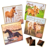 16 pcs Choco praline box with sayings   Horse  , assorted