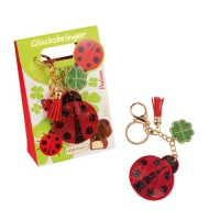 12 pcs Keychain  ladybird  gift box